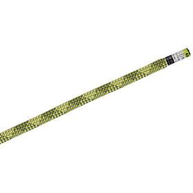 Edelrid Python - Corde d'escalade - 10mm 40m vert